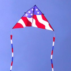 11 Foot Delta Patriotic Design
